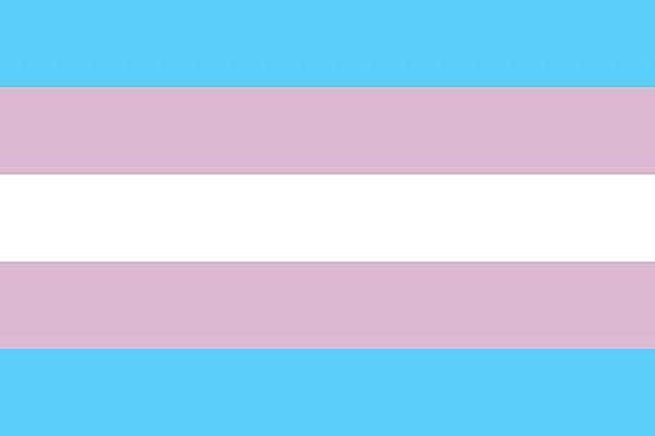 symbol_transgender_pride_flag