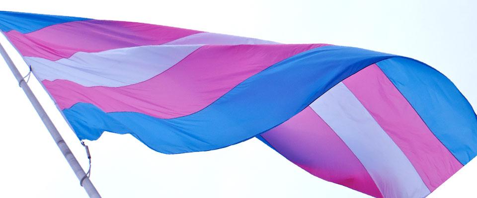 horizontal-trans-flag